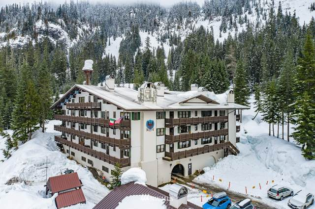 17700 Alpental Access Road SE #1003, North Bend, WA 98045 (#1722705) :: Priority One Realty Inc.