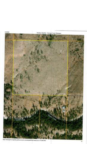 0 Unassigned, Tonasket, WA 98855 (MLS #1722711) :: Brantley Christianson Real Estate