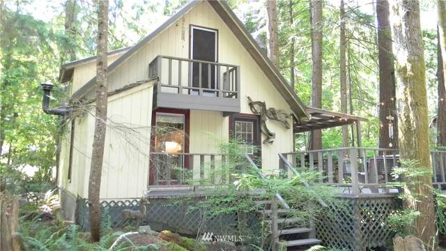 110 E Timber Lane, Tahuya, WA 98588 (#1722817) :: The Shiflett Group
