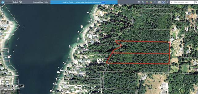 0 Horsehead Bay Drive NW, Gig Harbor, WA 98335 (#1723579) :: The Original Penny Team