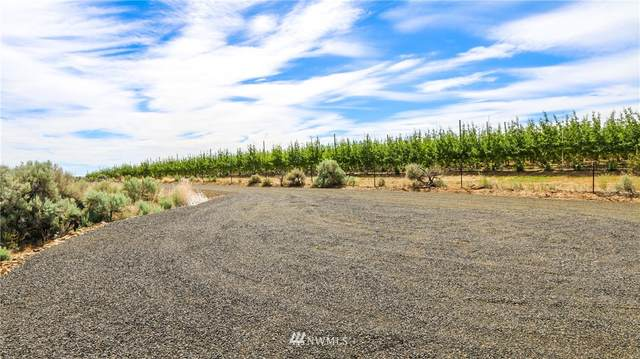 3 Cottonwood Road, Yakima, WA 98903 (#1723627) :: Canterwood Real Estate Team