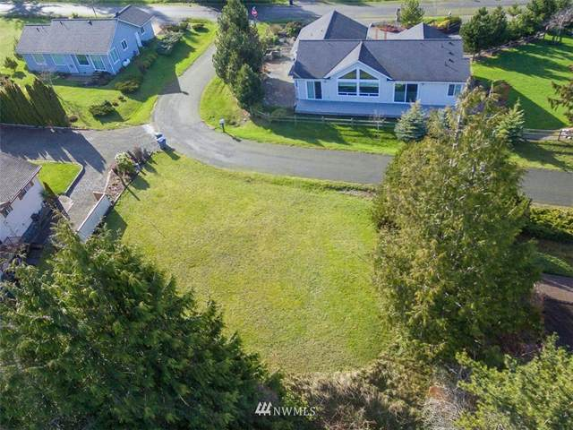 9999 Huckleberry, Sequim, WA 98382 (#1723646) :: Costello Team
