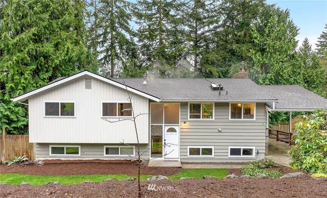 10435 NE 109th Street, Kirkland, WA 98033 (#1723852) :: Costello Team