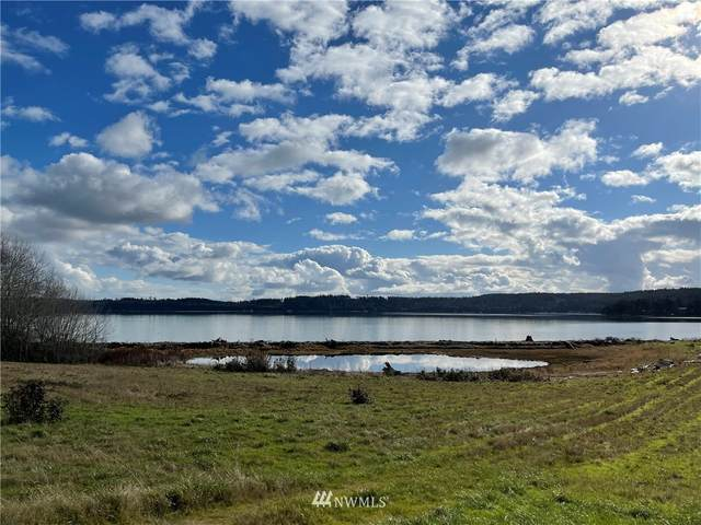 0 State Route 20, Coupeville, WA 98239 (#1725152) :: M4 Real Estate Group