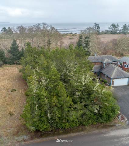 254 Olympic View Avenue NE, Ocean Shores, WA 98569 (#1725985) :: Shook Home Group