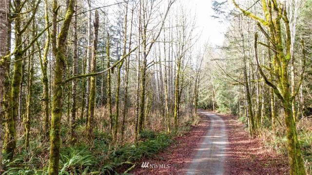 102 322nd Way NE, Carnation, WA 98014 (#1726096) :: Costello Team