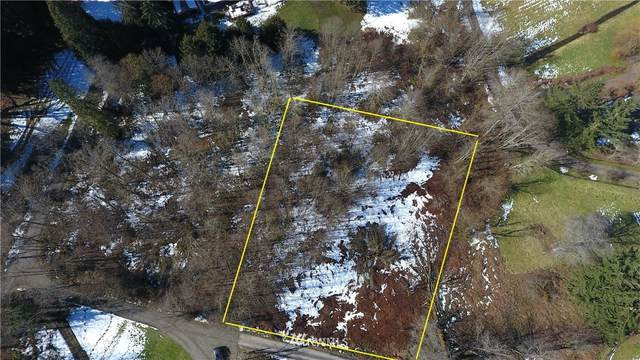 222306 Vacant Land, Issaquah, WA 98027 (#1726361) :: Ben Kinney Real Estate Team