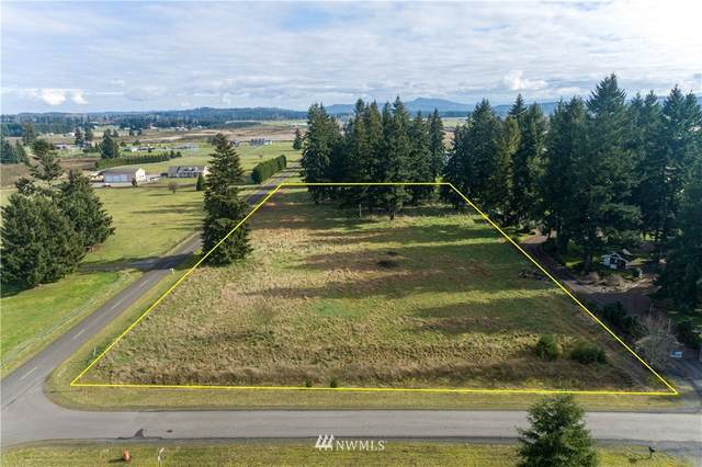 4307 SW 169th Avenue, Rochester, WA 98579 (#1726379) :: Costello Team