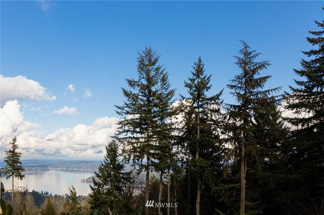 17633 SE Cougar Mountain Drive, Bellevue, WA 98006 (#1729056) :: Canterwood Real Estate Team