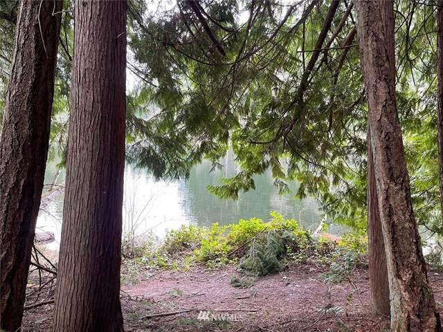 18542 Woodside Drive SE, Yelm, WA 98597 (#1729079) :: Canterwood Real Estate Team