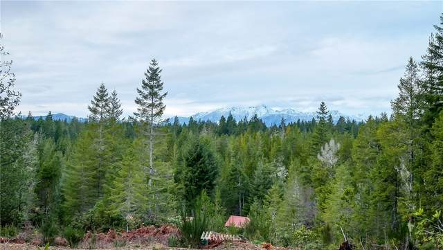 201 NE Dewatto Road, Tahuya, WA 98588 (#1729345) :: Costello Team