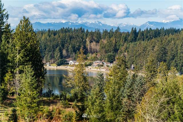 10924 Bliss Cochrane Road NW, Gig Harbor, WA 98329 (#1729394) :: Ben Kinney Real Estate Team
