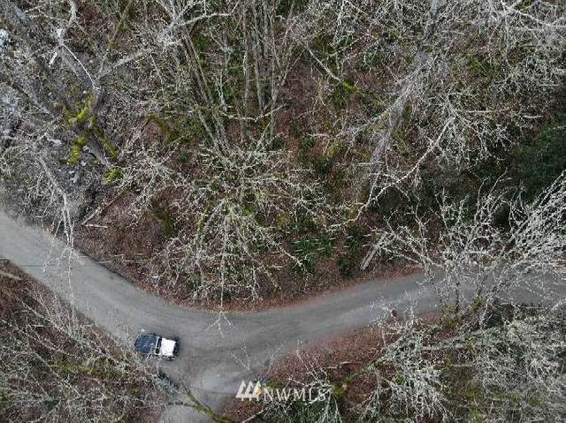 47 Lot And 1 Lot  Brays Way, Bellingham, WA 98226 (#1729800) :: Tribeca NW Real Estate