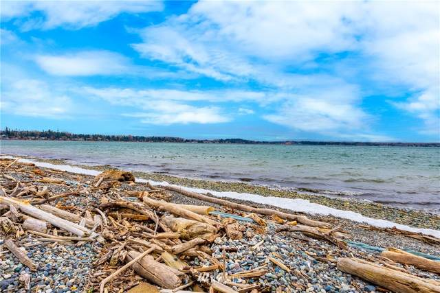 5455 Tsawwassen Loop, Birch Bay, WA 98230 (#1730216) :: The Original Penny Team