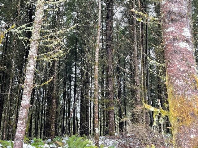192 NE Erion Road, Battle Ground, WA 98604 (#1730604) :: Urban Seattle Broker