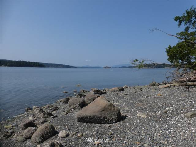 251 Snug Harbor Drive, Lopez Island, WA 98261 (#1731576) :: The Shiflett Group