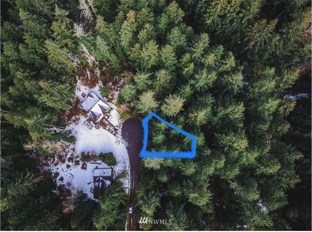 11415 Tillicum Drive, Anderson Island, WA 98303 (#1731630) :: The Shiflett Group
