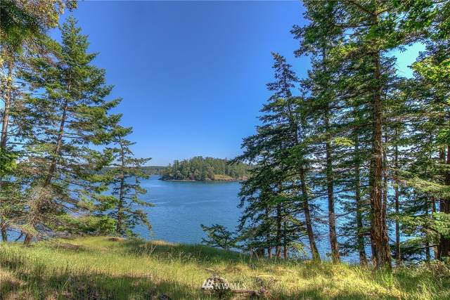 1709 Spring Point Road, Orcas Island, WA 98243 (#1732085) :: Shook Home Group
