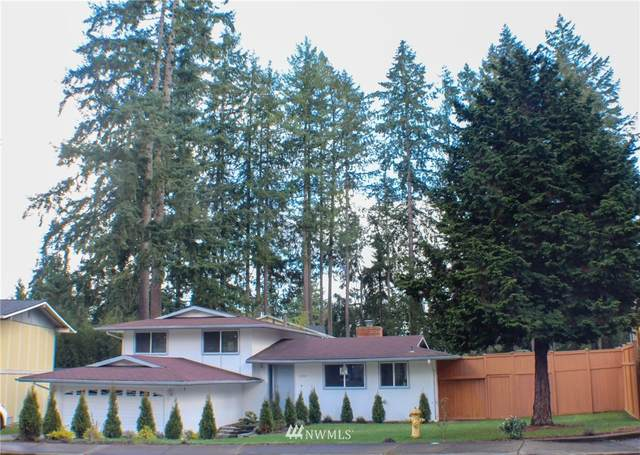 1504 168th Avenue NE, Bellevue, WA 98008 (#1732112) :: The Original Penny Team