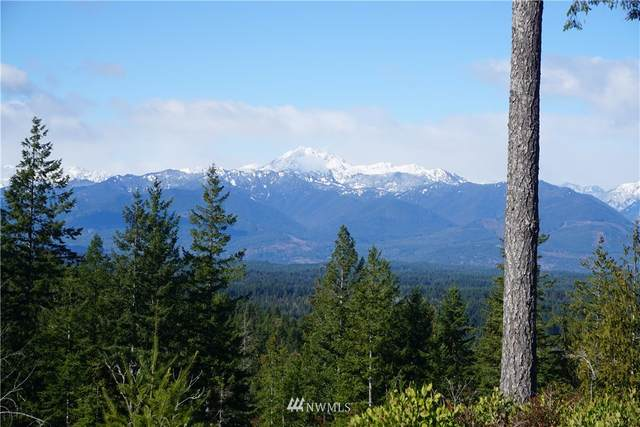 19 NW Green Mountain Road, Bremerton, WA 98312 (#1732259) :: The Snow Group