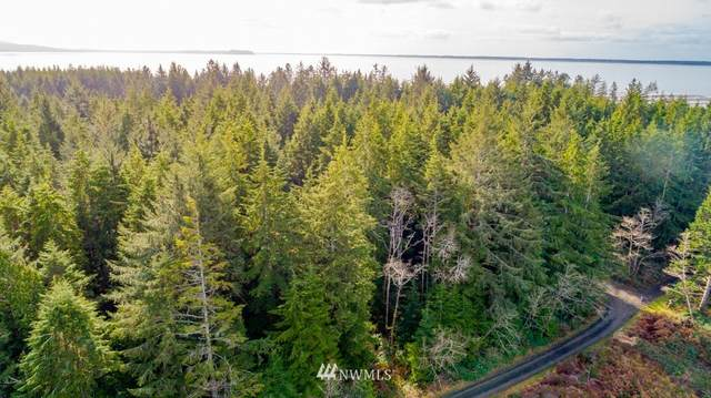0 Bay Lane, South Bend, WA 98596 (#1732295) :: Northwest Home Team Realty, LLC