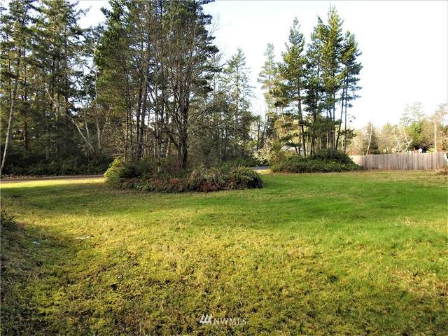 30504 M Place, Ocean Park, WA 98640 (#1732619) :: The Shiflett Group
