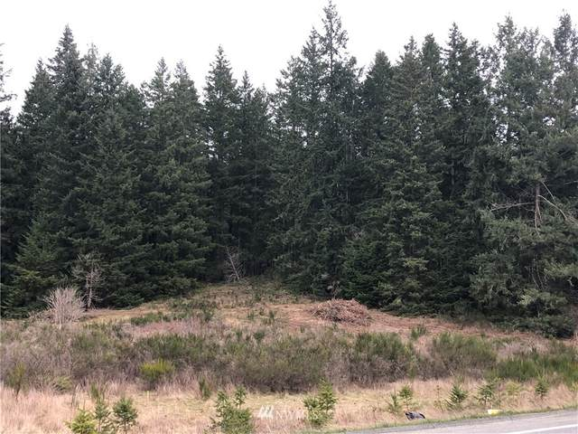 0 Hwy 525, Langley, WA 98260 (MLS #1733573) :: Brantley Christianson Real Estate