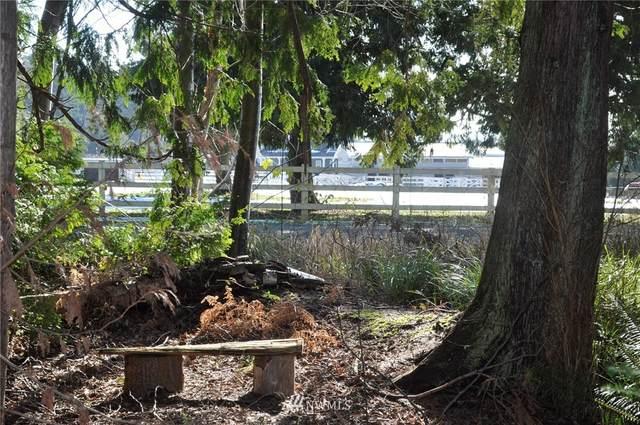 1741 Austin Road, Point Roberts, WA 98281 (MLS #1733624) :: Brantley Christianson Real Estate