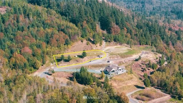 11 Avalon Heights, Sedro Woolley, WA 98284 (#1733873) :: Ben Kinney Real Estate Team