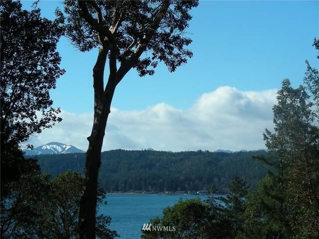 1 Yew Tree Lane, Tahuya, WA 98588 (#1734586) :: Costello Team