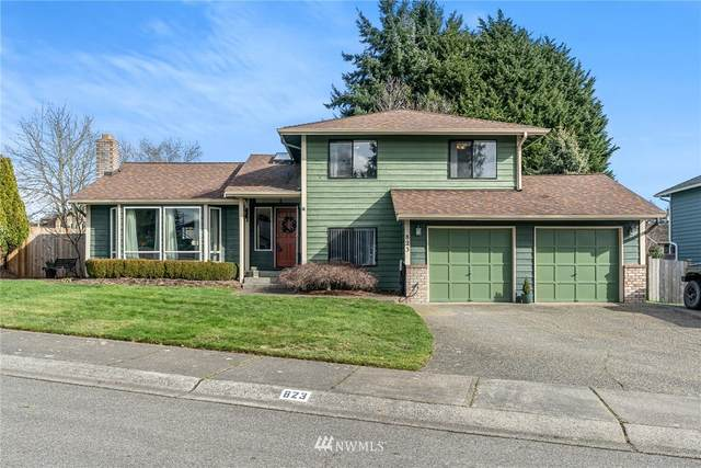 823 151st Place SW, Lynnwood, WA 98087 (#1734761) :: Better Properties Real Estate