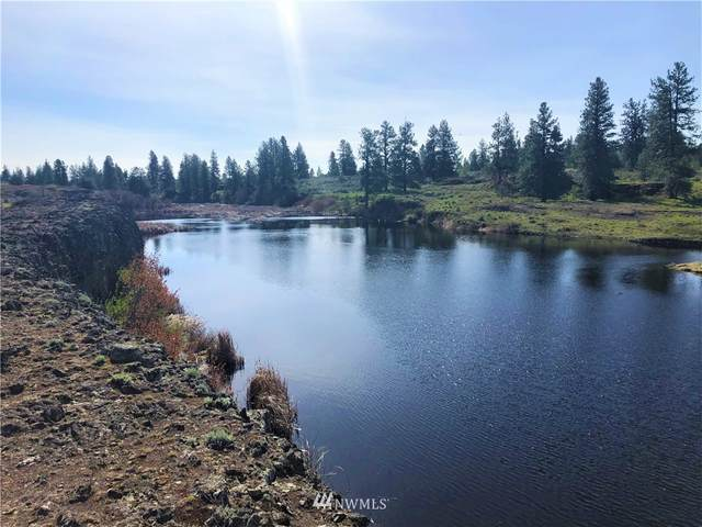 0 Telford Road, Davenport, WA 99122 (MLS #1735222) :: Brantley Christianson Real Estate