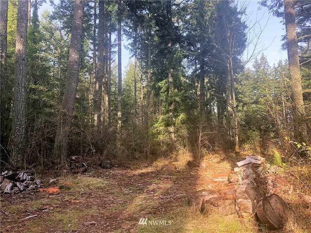 13826 Rainier Road SE, Rainier, WA 98576 (#1735313) :: Keller Williams Realty