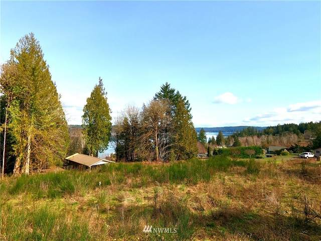 0 E Galliano Drive, Union, WA 98592 (MLS #1735323) :: Brantley Christianson Real Estate