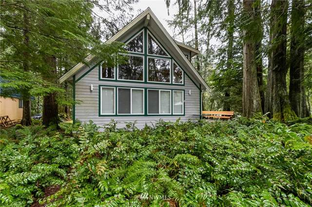 19047 Glacier Rim Drive, Deming, WA 98244 (#1735573) :: Pickett Street Properties