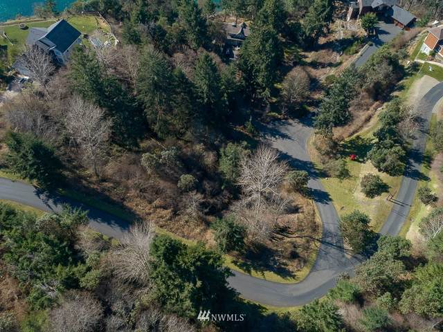 1024 Papago Drive NW, Fox Island, WA 98333 (#1735707) :: TRI STAR Team | RE/MAX NW
