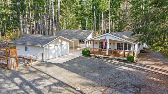 81 N Goldeneye Drive, Hoodsport, WA 98548 (#1736089) :: Pickett Street Properties