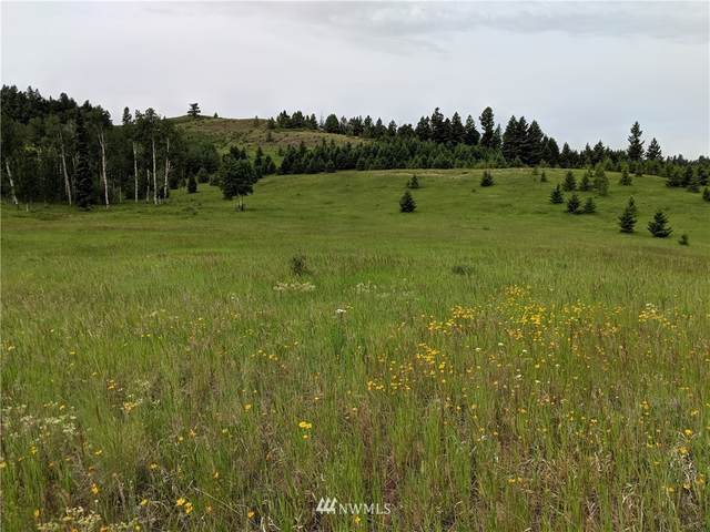 80 Lot T Moose Mtn Road, Oroville, WA 98844 (#1736275) :: Better Homes and Gardens Real Estate McKenzie Group