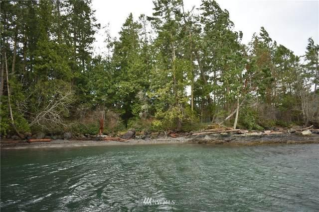 685 Broken Point Road, Shaw Island, WA 98286 (#1736735) :: Urban Seattle Broker