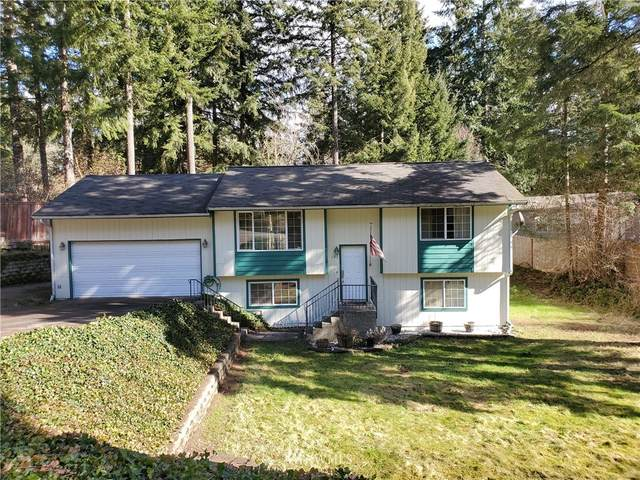 191 NE Captain Hook Drive, Belfair, WA 98528 (#1736835) :: Ben Kinney Real Estate Team