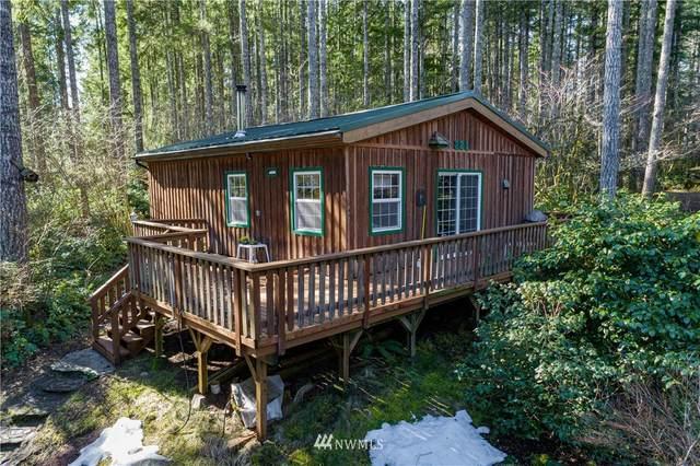 221 Beaver Drive, Hoodsport, WA 98548 (#1737166) :: M4 Real Estate Group