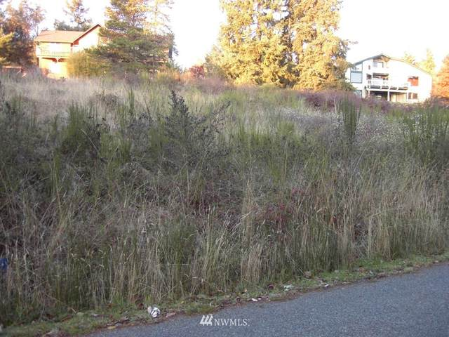 151 Combs Street, Port Townsend, WA 98368 (#1737187) :: M4 Real Estate Group