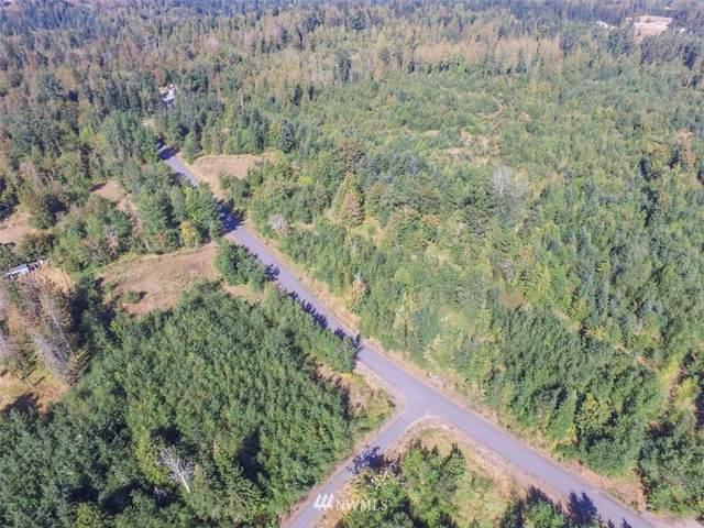 9999 Grand Ridge Way, Port Angeles, WA 98362 (#1737202) :: Costello Team