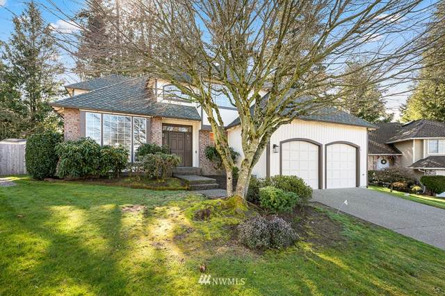 4117 238th Court SE, Sammamish, WA 98029 (#1737259) :: The Original Penny Team