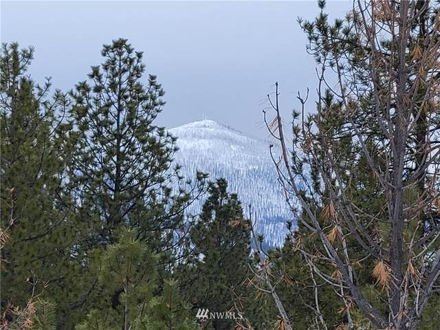1796 Tunk Creek Road, Riverside, WA 98849 (#1737270) :: Keller Williams Western Realty