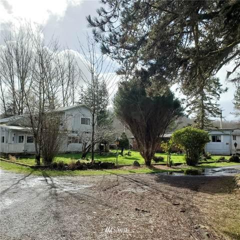 1865 W State Route 4, Skamokawa, WA 98647 (#1737272) :: Better Properties Real Estate