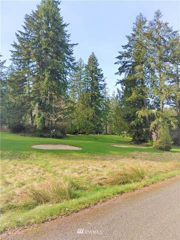 10415 Edgewood Drive, Anderson Island, WA 98303 (#1737357) :: The Shiflett Group