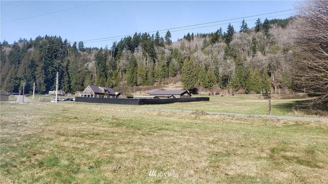 43095 Challenger Road, Concrete, WA 98237 (#1737824) :: Ben Kinney Real Estate Team