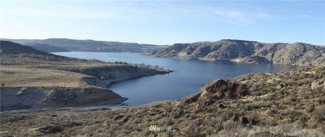 1 Spring Canyon Road, Grand Coulee, WA 99133 (#1737830) :: Costello Team