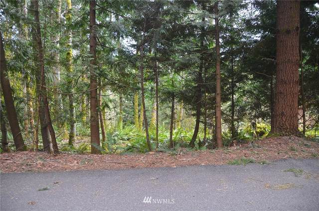 10 Basin View Circle, Bellingham, WA 98229 (#1737914) :: Canterwood Real Estate Team